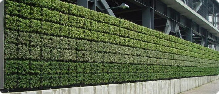 Green wall great parksgreat parks for Vertical garden wall systems